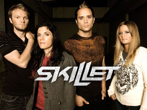 Skillet cover